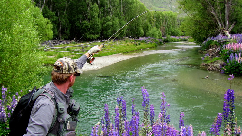 Fly fishing the small river and streams in the South Island of New Zealand