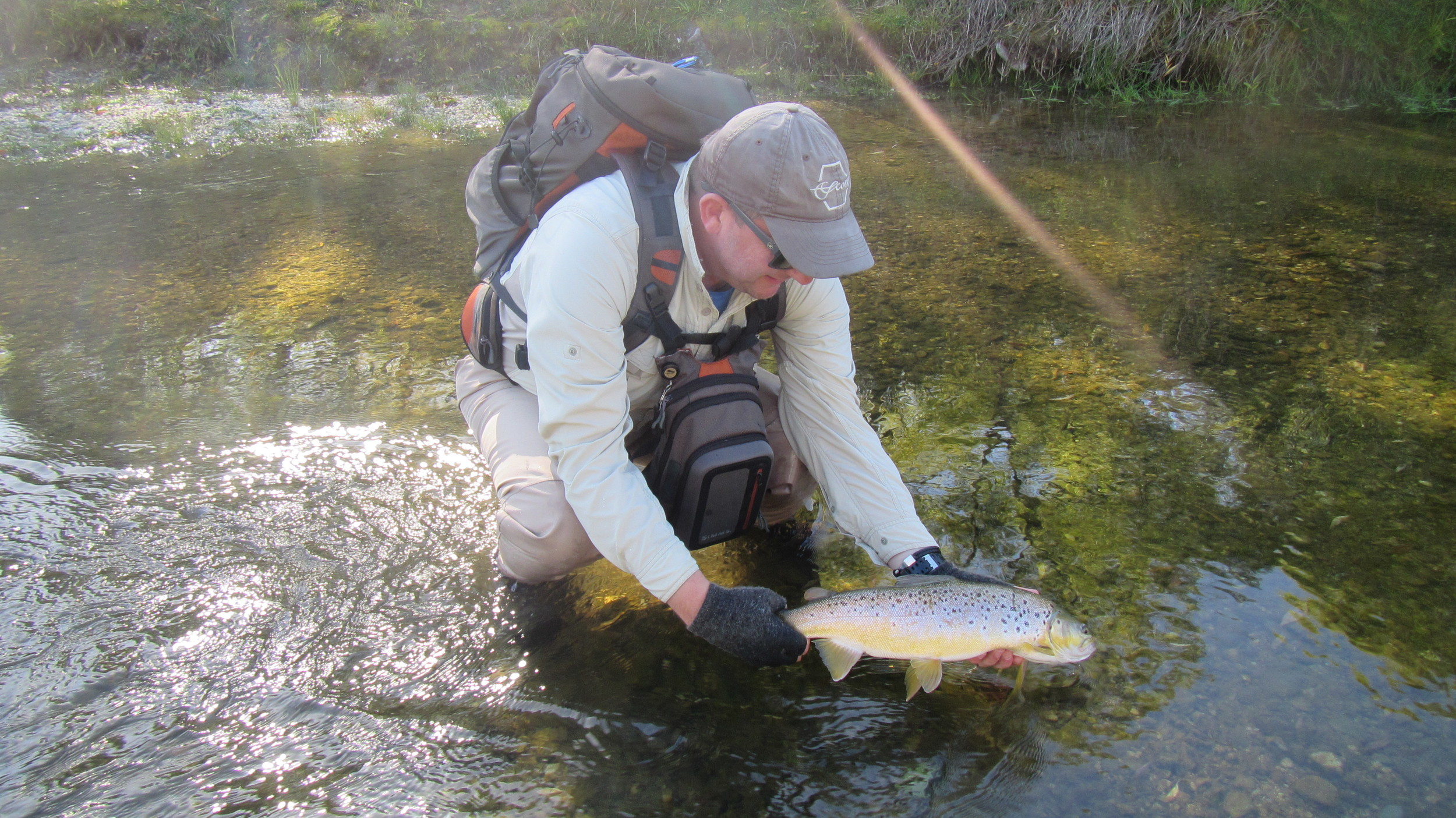 Fly fishing Queenstown for trophy brown trout