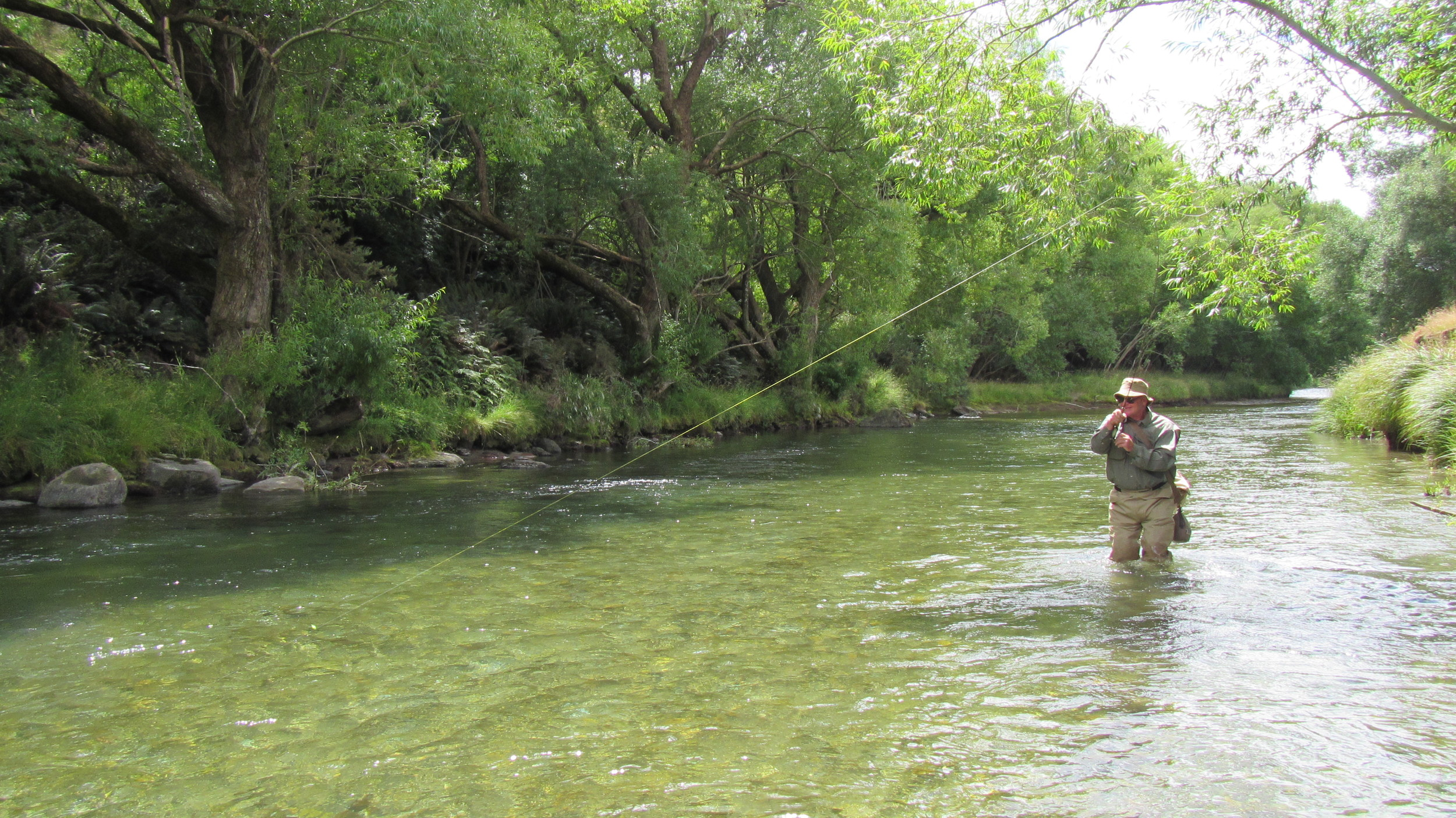 New Zealand trout fishing on the Mataura river.
