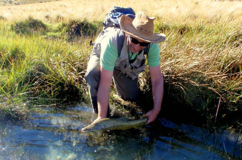 Fly Fishing New Zealand in the Mckenzie region.