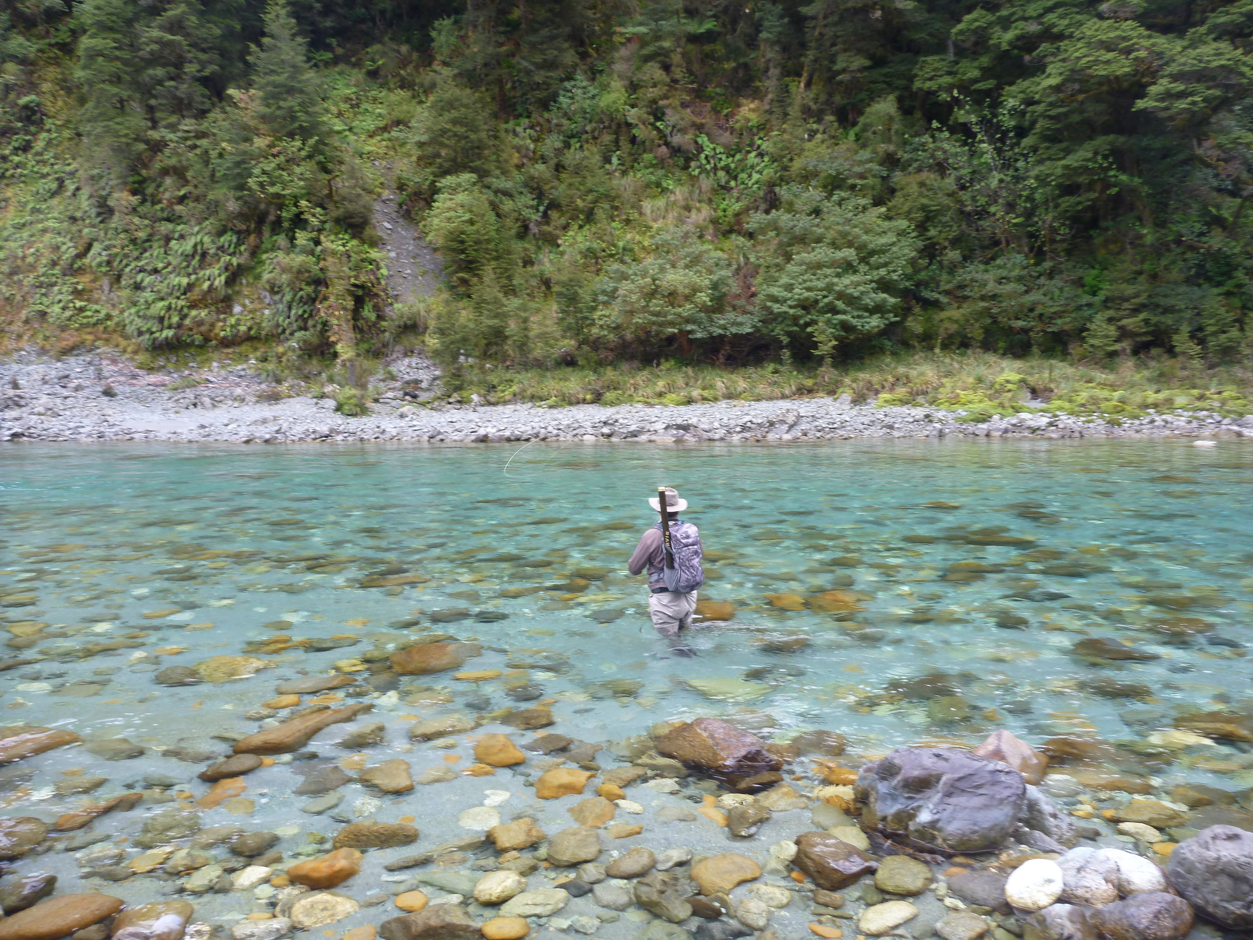 New Zealand Trout Fishing in the Southland region.