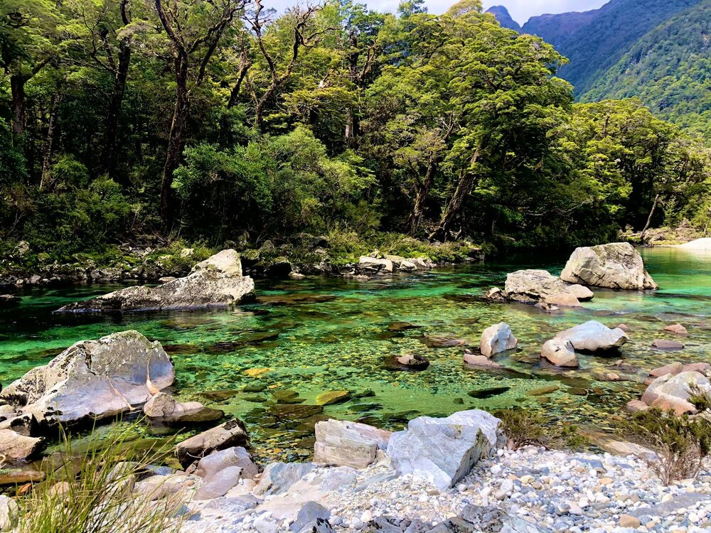 The most beautiful river I have ever had the pleasure to fish … deep in Fiordland country.