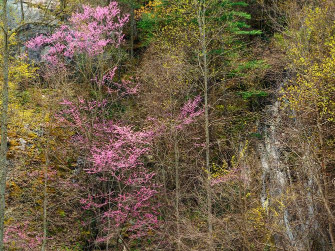 07-bald-river-gorge-tennessee-670.jpg