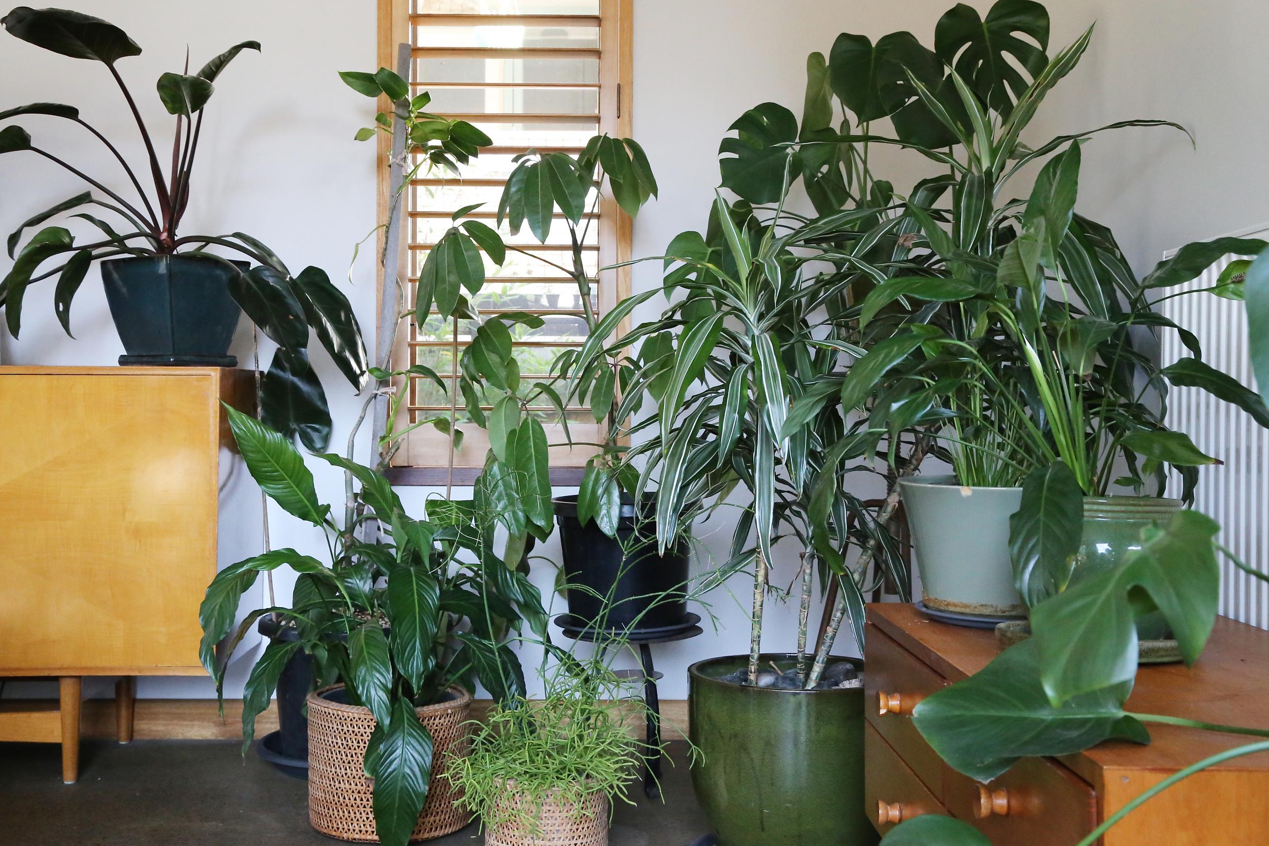 eco interiors, sustainable interior design, sustainable interiors