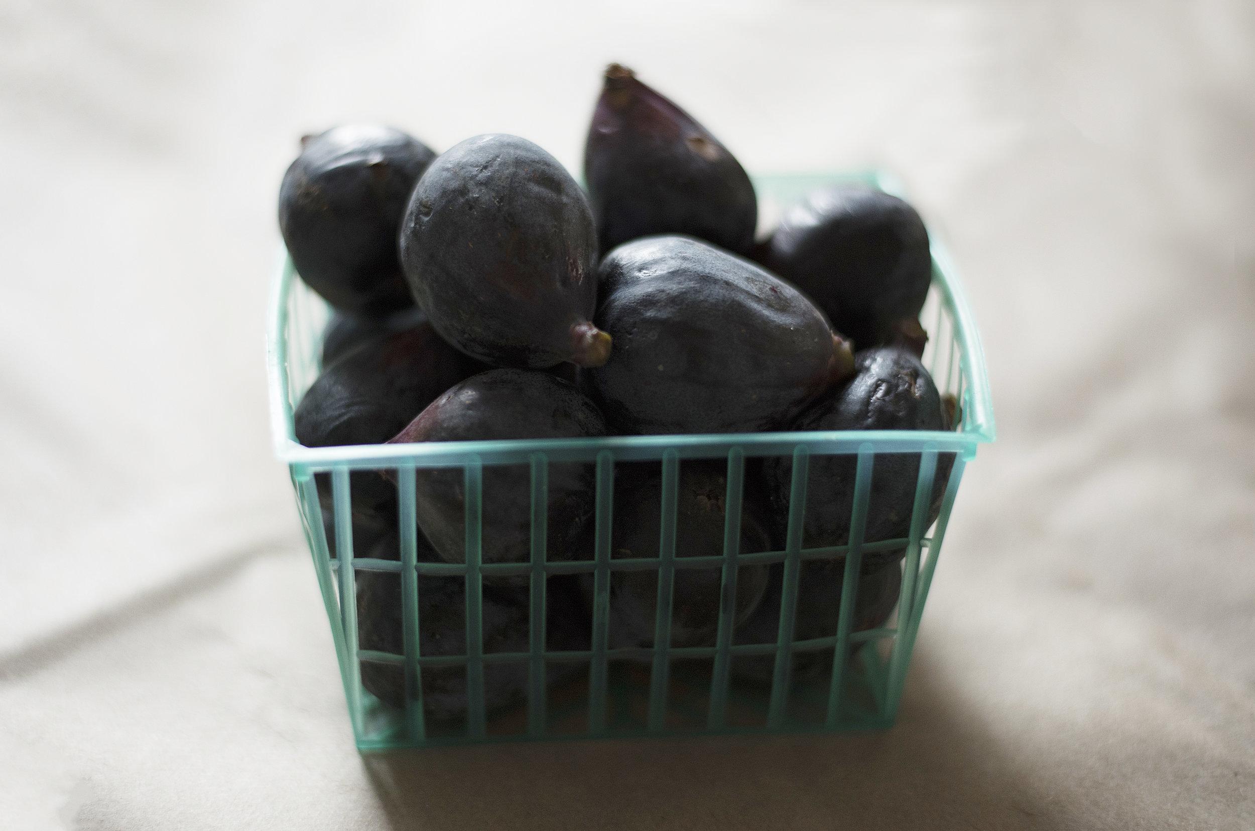 Figs020.jpg