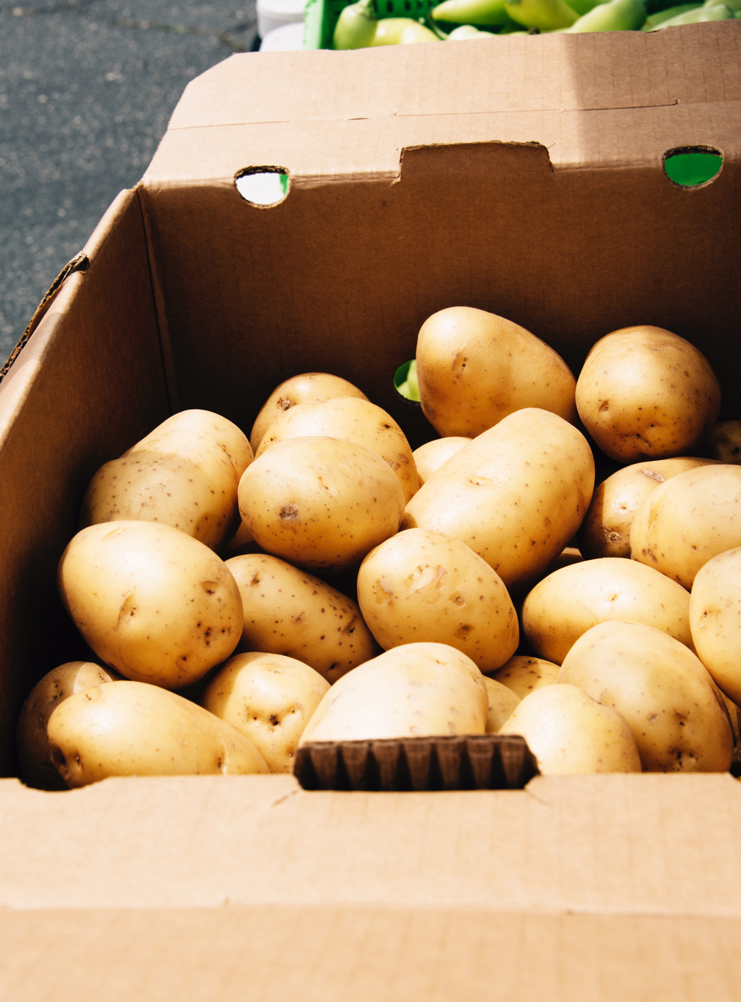 FoodForward_RebeccaPeloquin_017.JPG