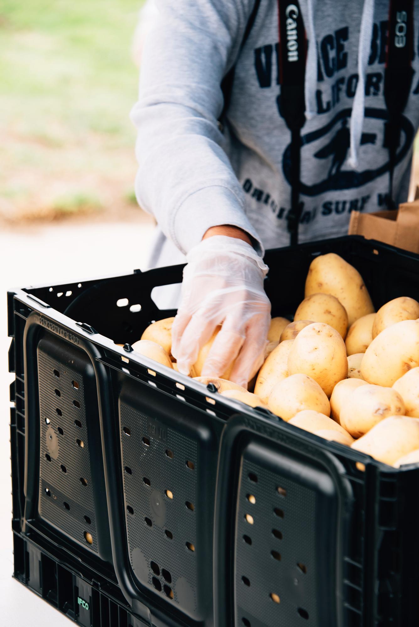 FoodForward_RebeccaPeloquin_029.JPG