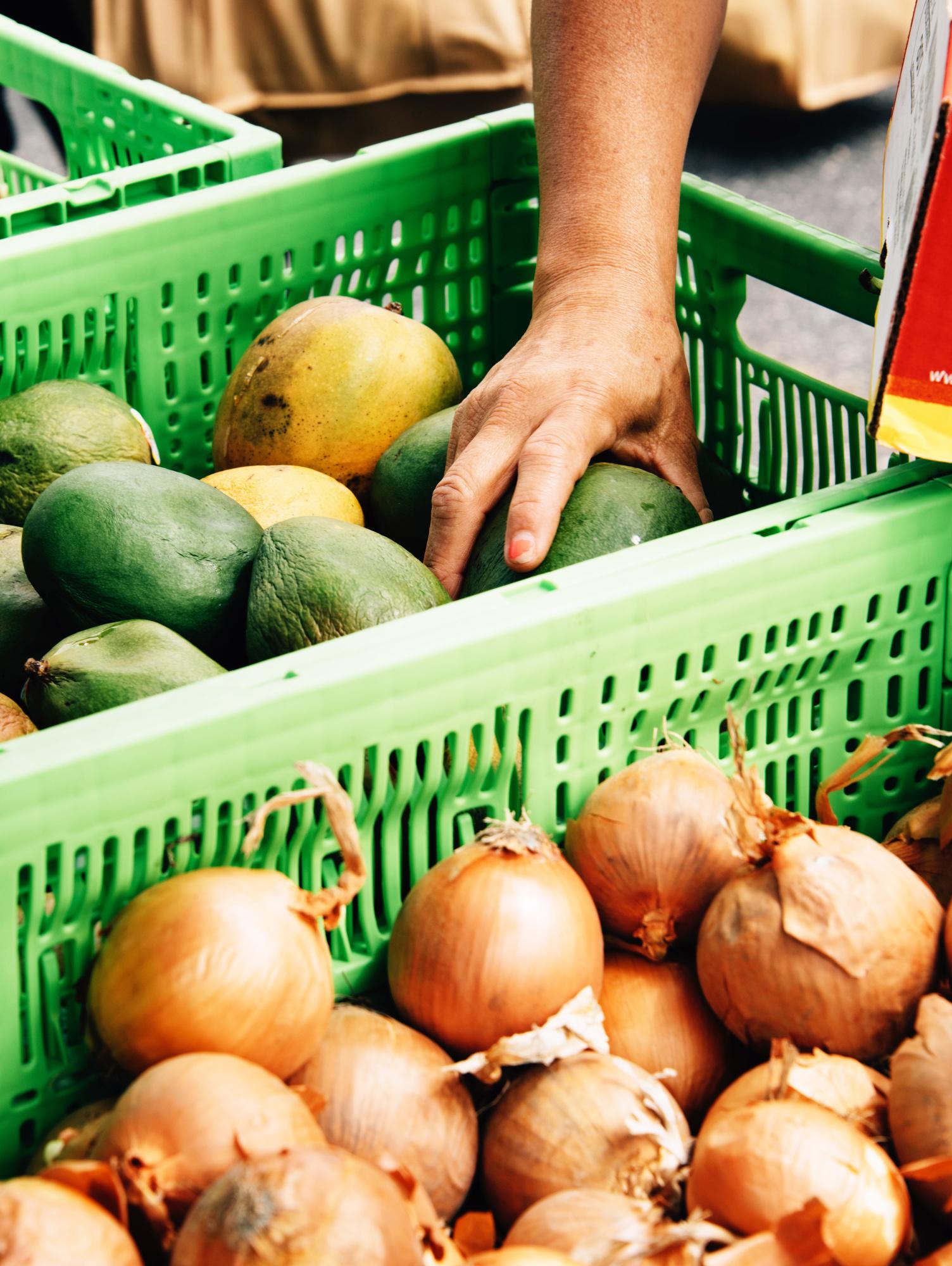 FoodForward_RebeccaPeloquin_045.JPG