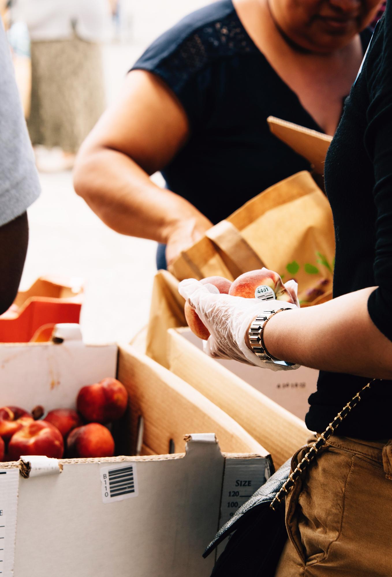 FoodForward_RebeccaPeloquin_047.JPG