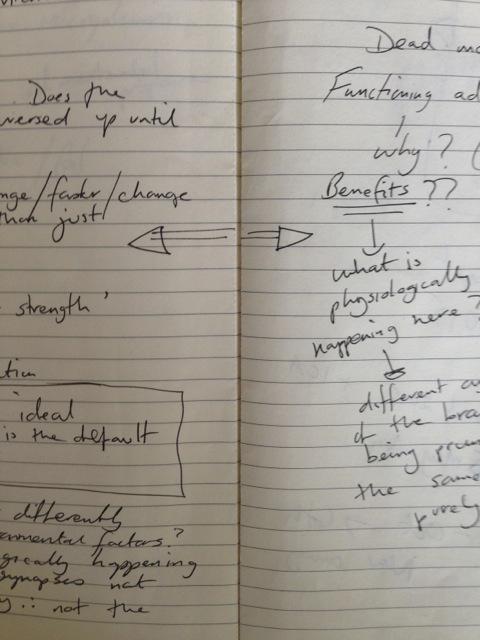 dead-mother-notebooks-06.jpg