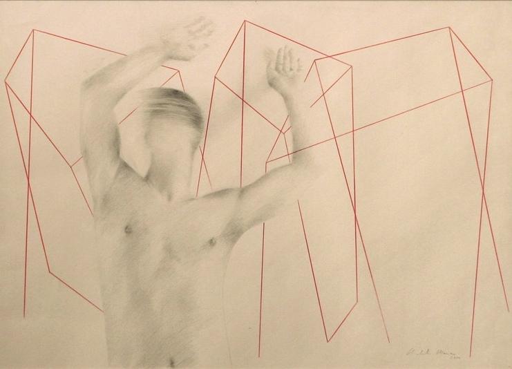 Senza titolo, 2004  grafite e pastello su carta  cm.50 x 70