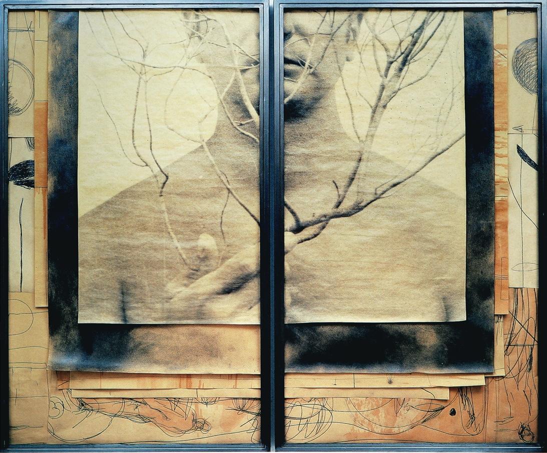 Senza titolo, 2002  Tecnica mista ed emulsione fotografica su carta, ferro, vetro  Dittico,cm.150 x 180