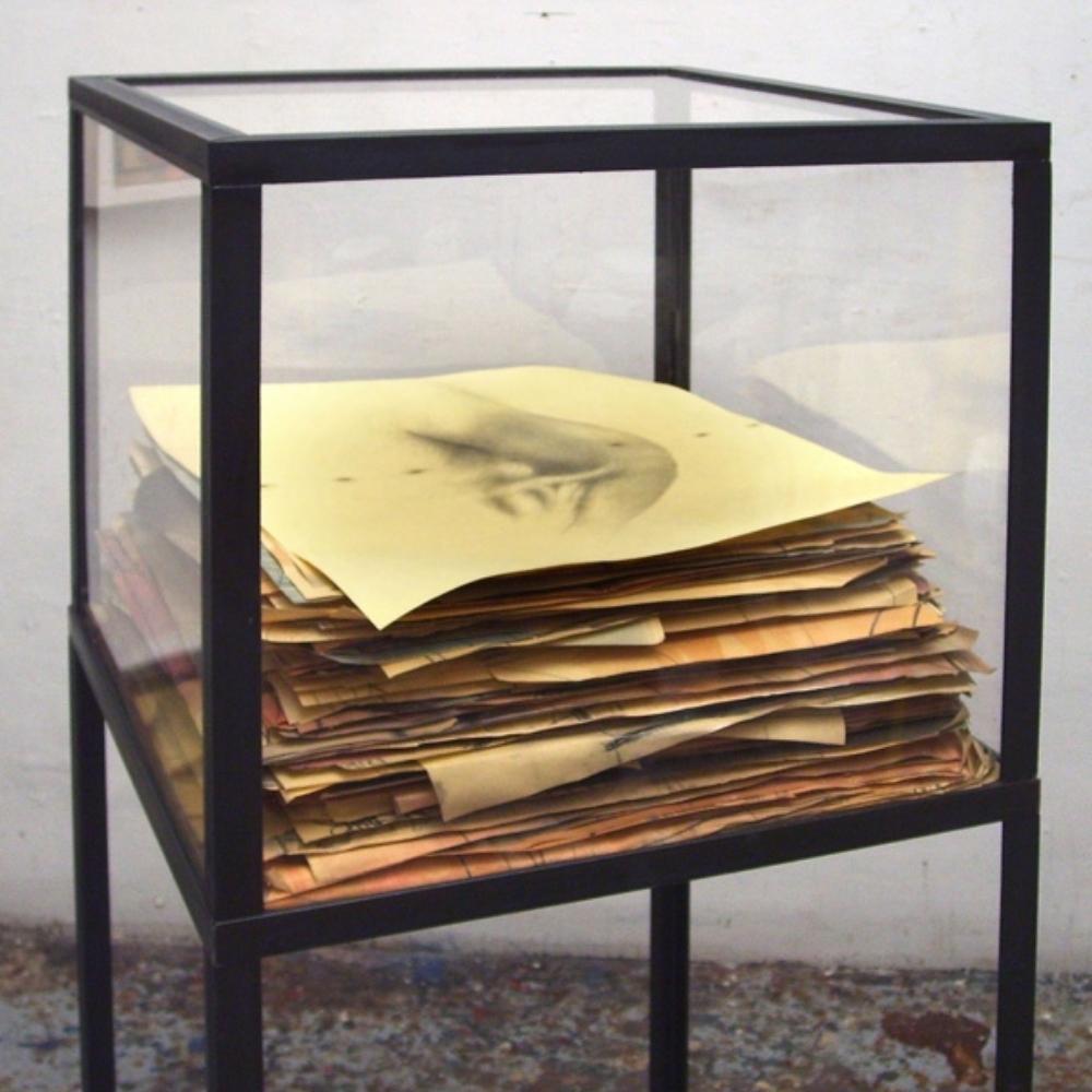 Senza titolo, 2007  tecnica mista su carta, ferro, vetro  cm 145 x 50 x 50
