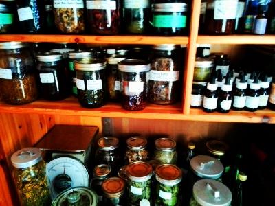 Tinctures, Oils, Salves, Glycerites, Tea Blends, Dried Herbs.