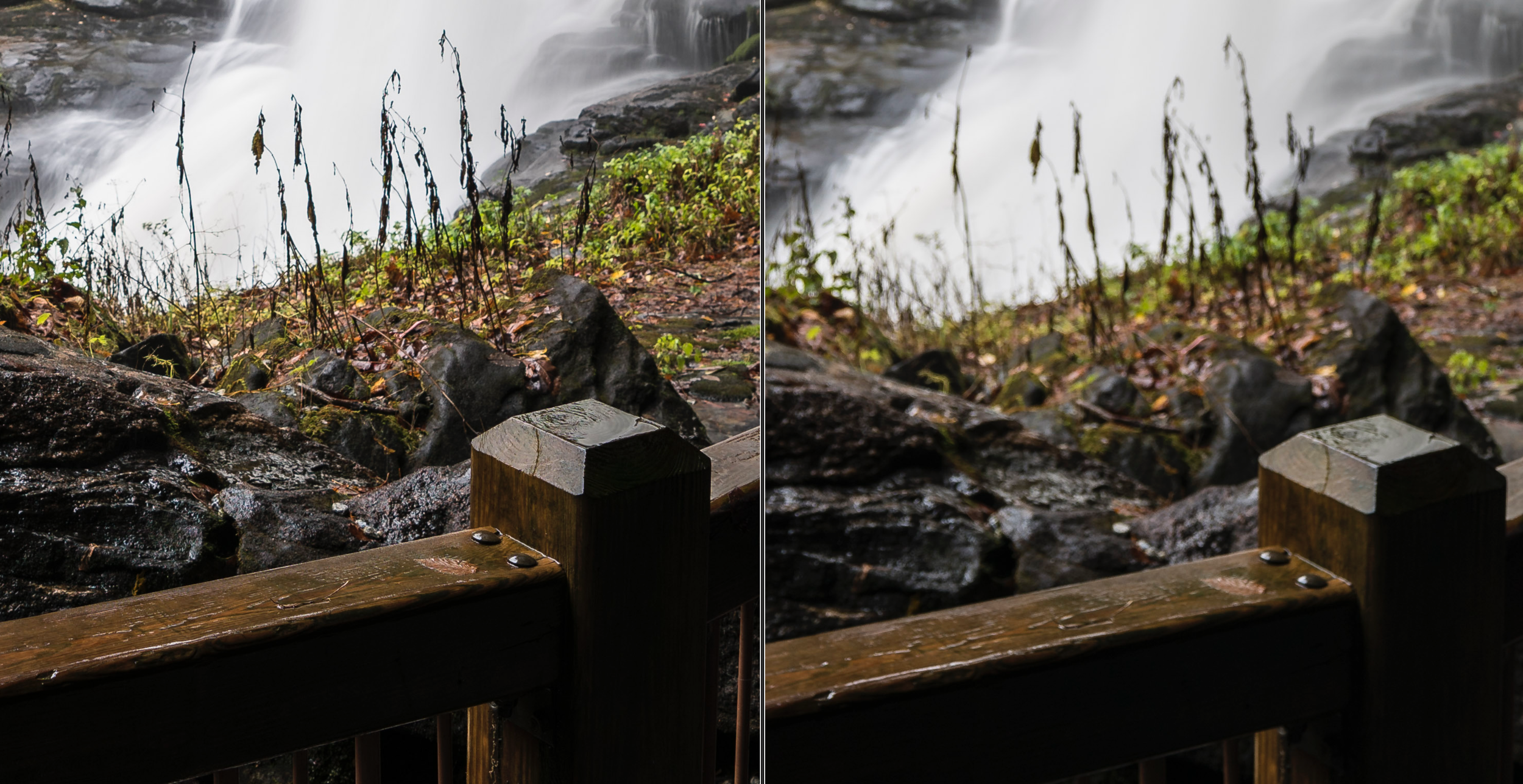 f/4, 100% crop, Sony 16-35 GM left, Sony 12-24 G right