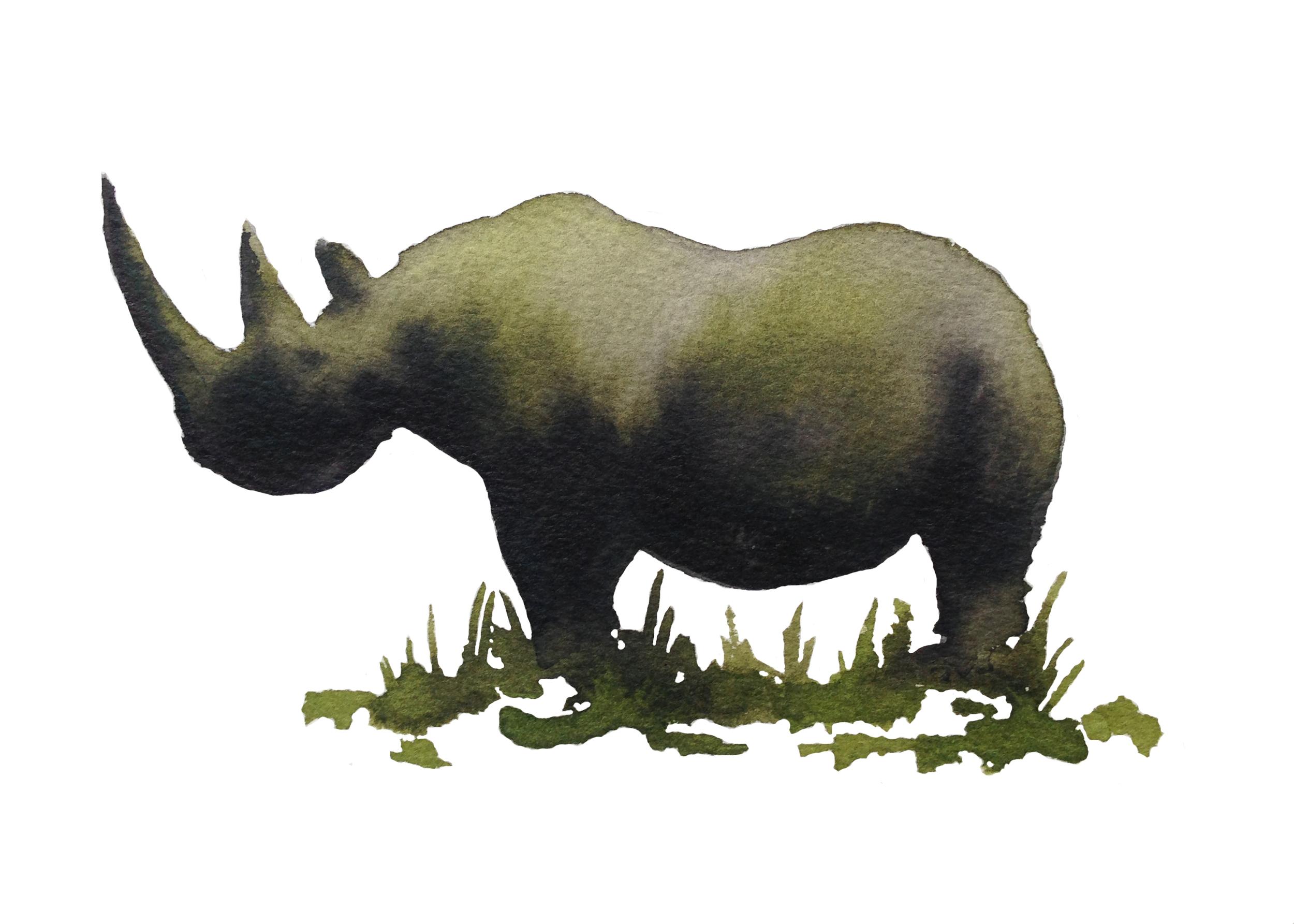 Black Rhino ps.jpg