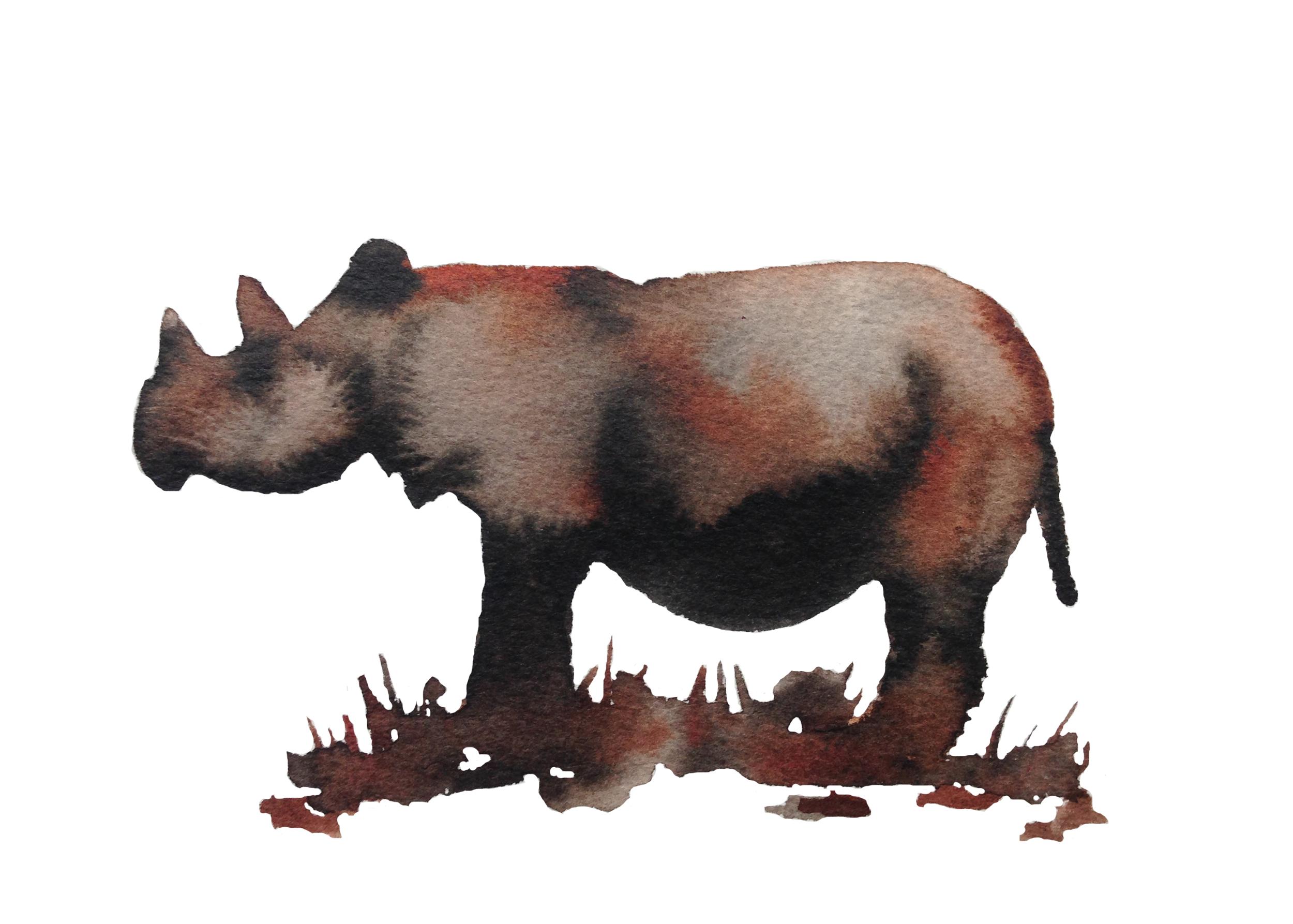 Sumatran Rhino ps.jpg