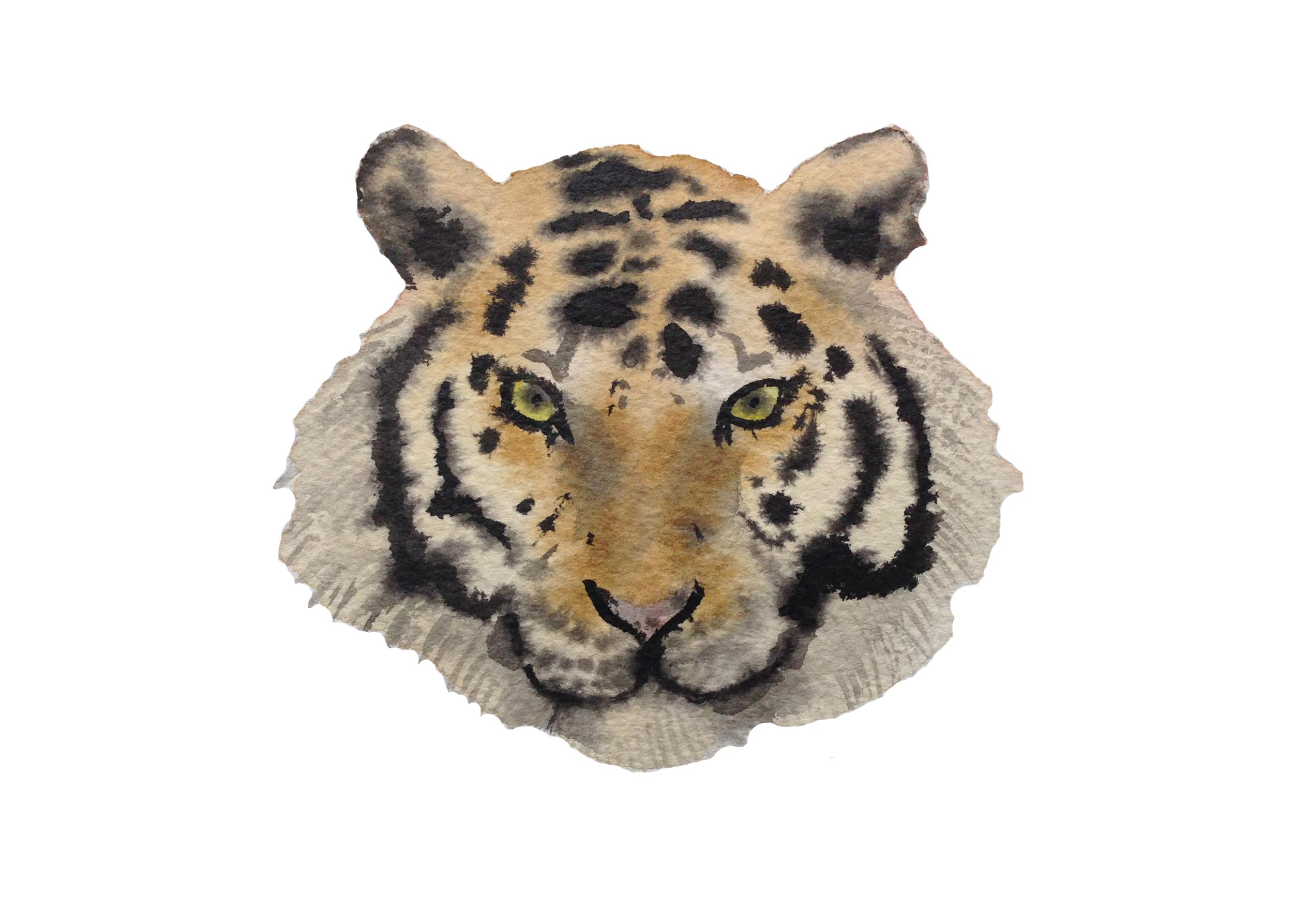 South China Tiger ps.jpg