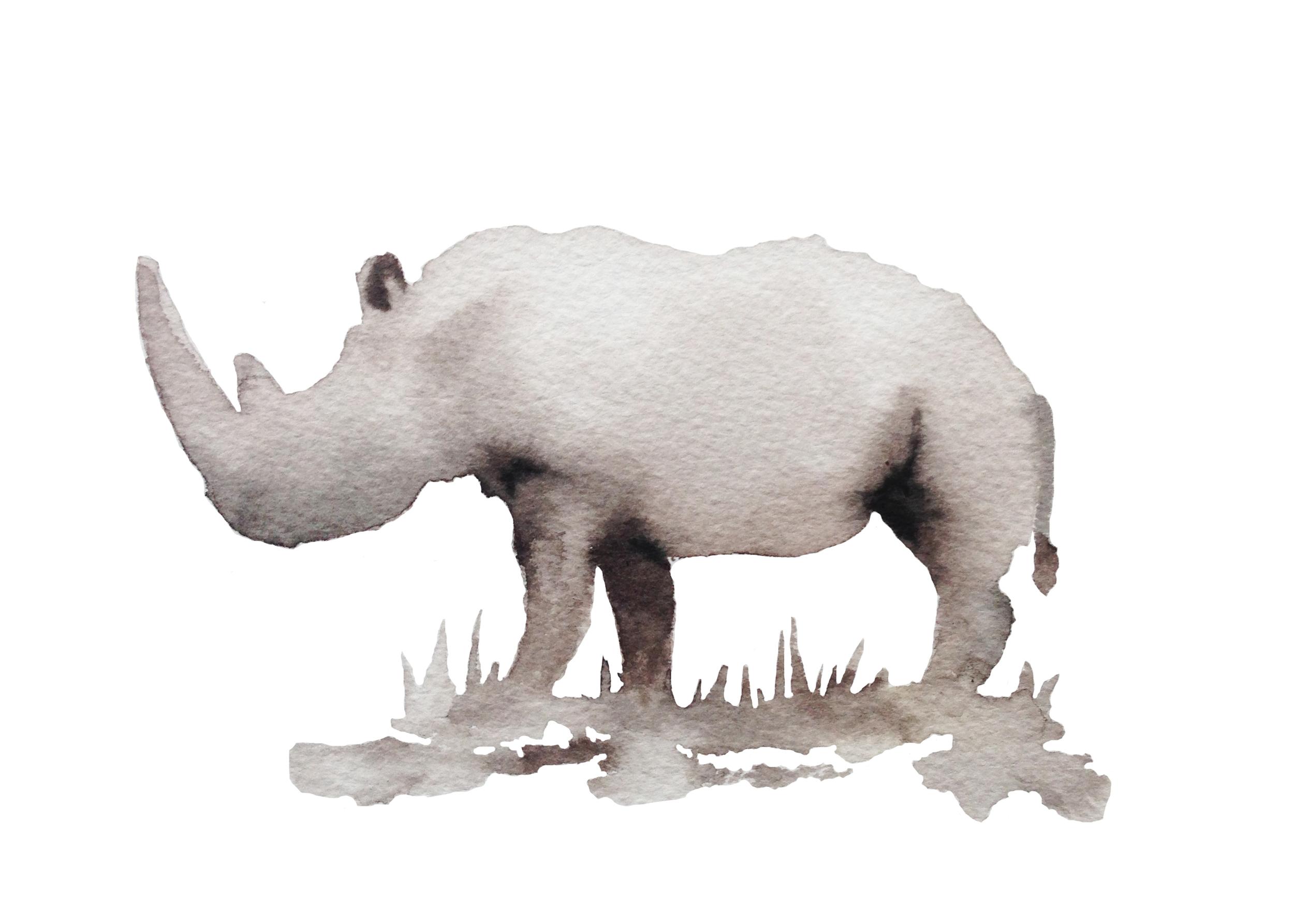 N White Rhino ps.jpg