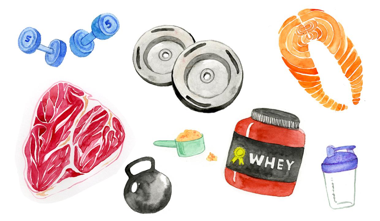 protein2.jpg