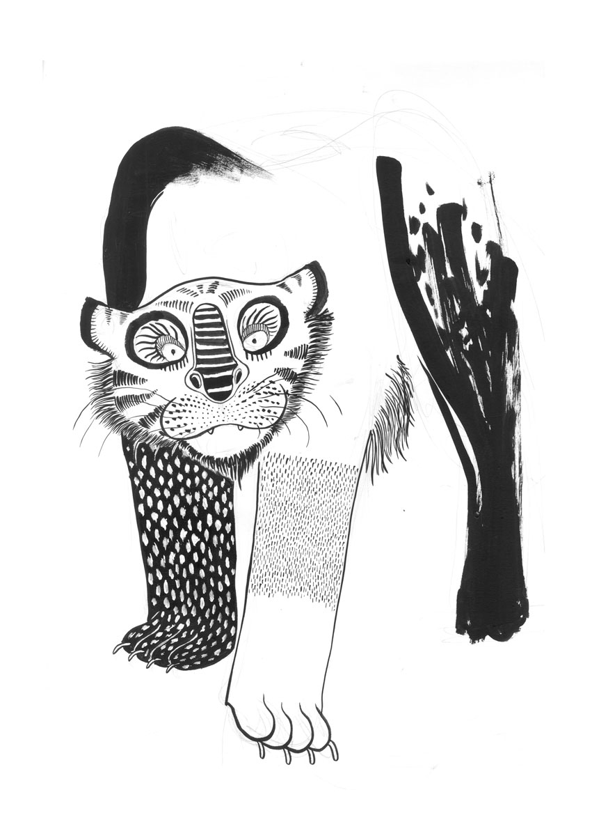 Tiger_sketch_02-small.jpg