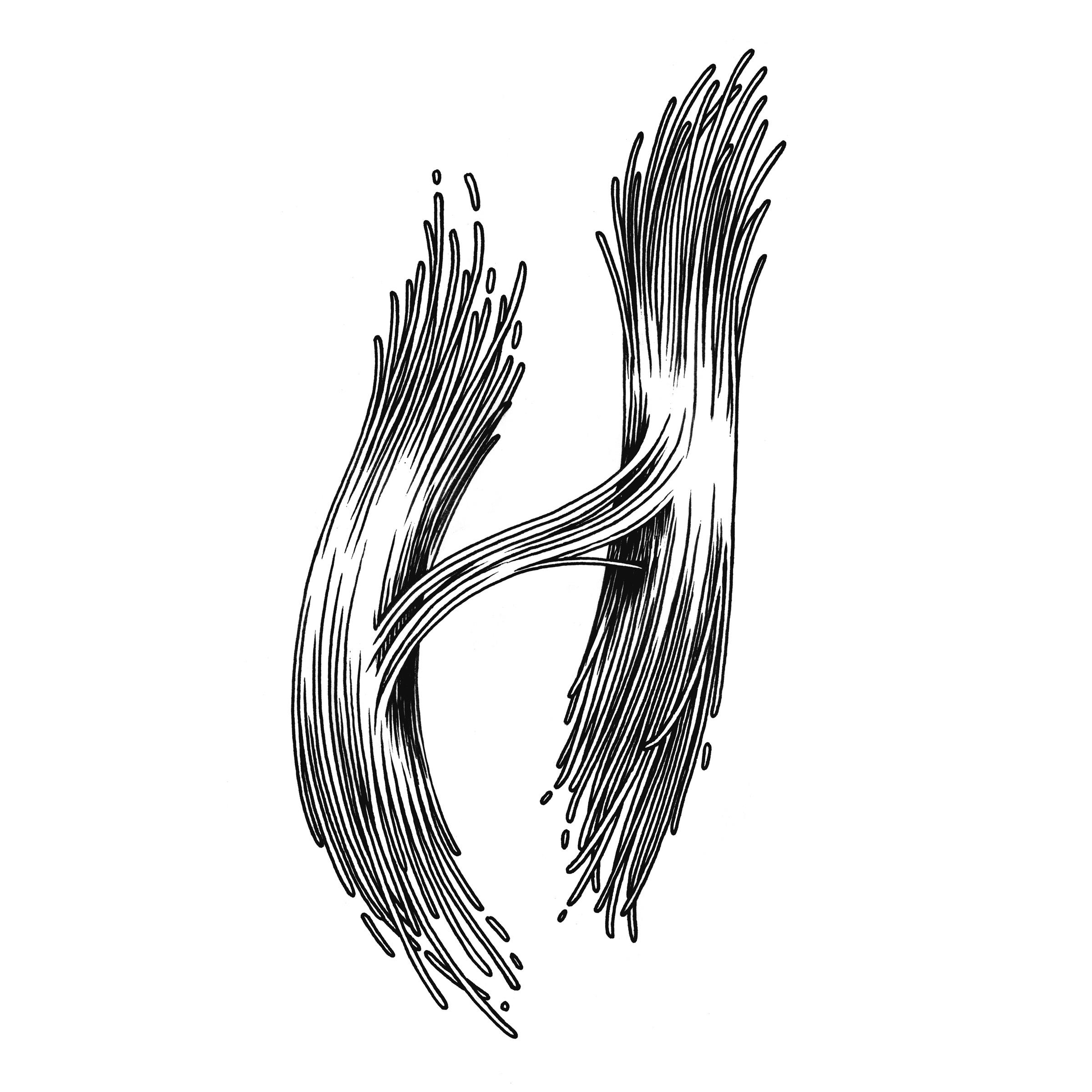 H_02.2-web.jpg