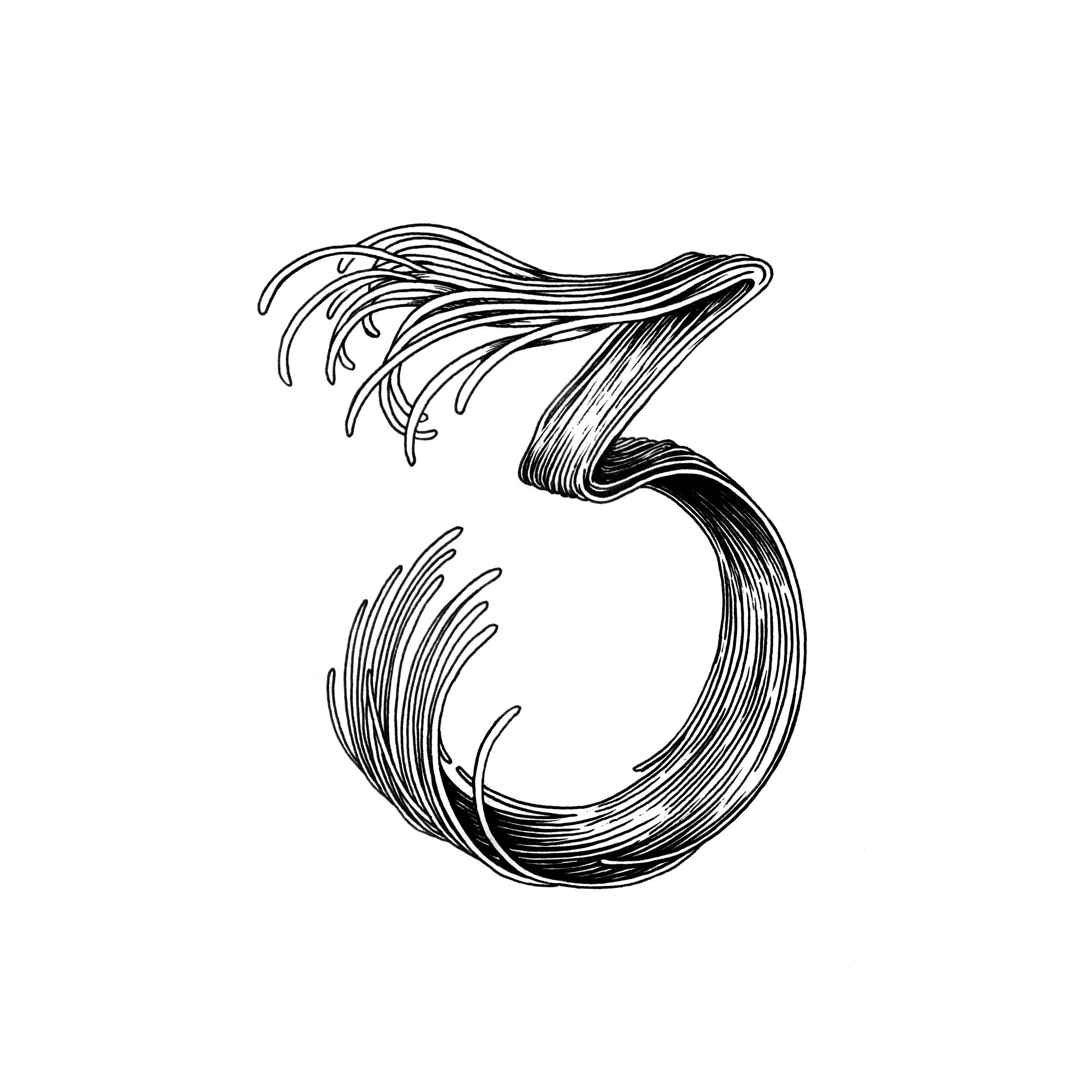 3_02-web.jpg
