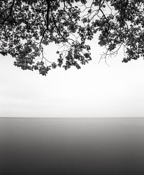 Title: Lake Shore II, Camera: Mamiya RB Pro S, Lens: Mamiya Sekor 50 mm, Filter: Lee Big Stopper, Film: Kodak T-Max 400, Exposure: 60″, f 22, Lake Geneva, Switzerland, 2012