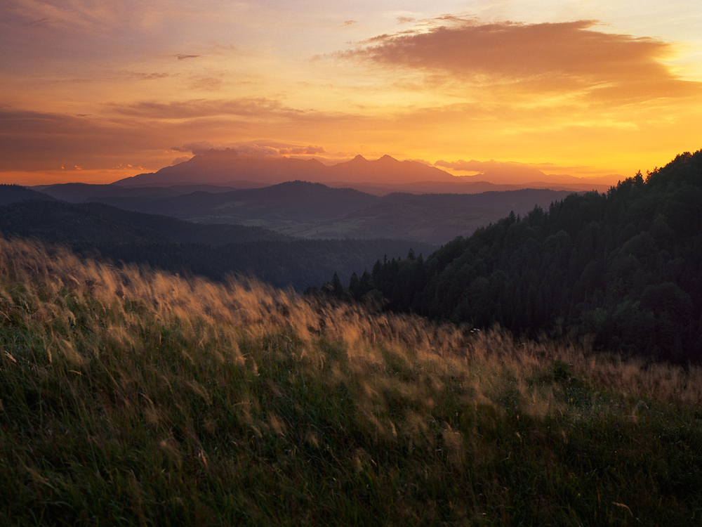 Golden Times, Lesnica, Slovakia