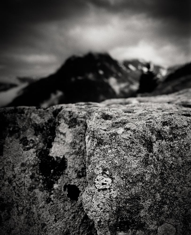 Title: Small World 2, Camera: Mamiya RB 67 Pro SD, Lens: Sekor 50 mm, Film: Kodak T-Max 100, Exposure: 1/30, f 22, Vallorcine, France, 2014