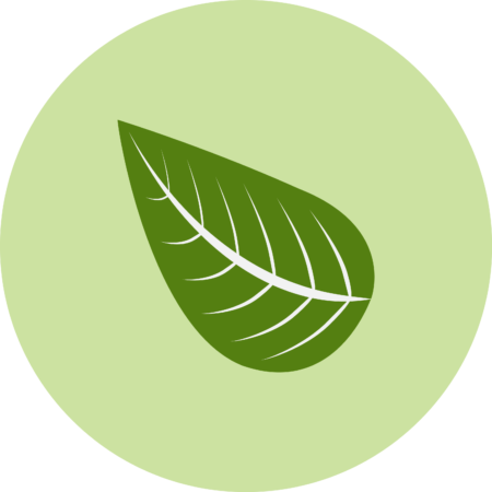 ECO-ICON-450x450.png