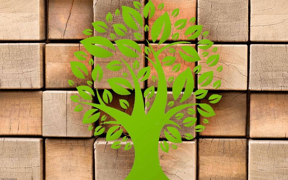 ekologihnie_kubiki.png