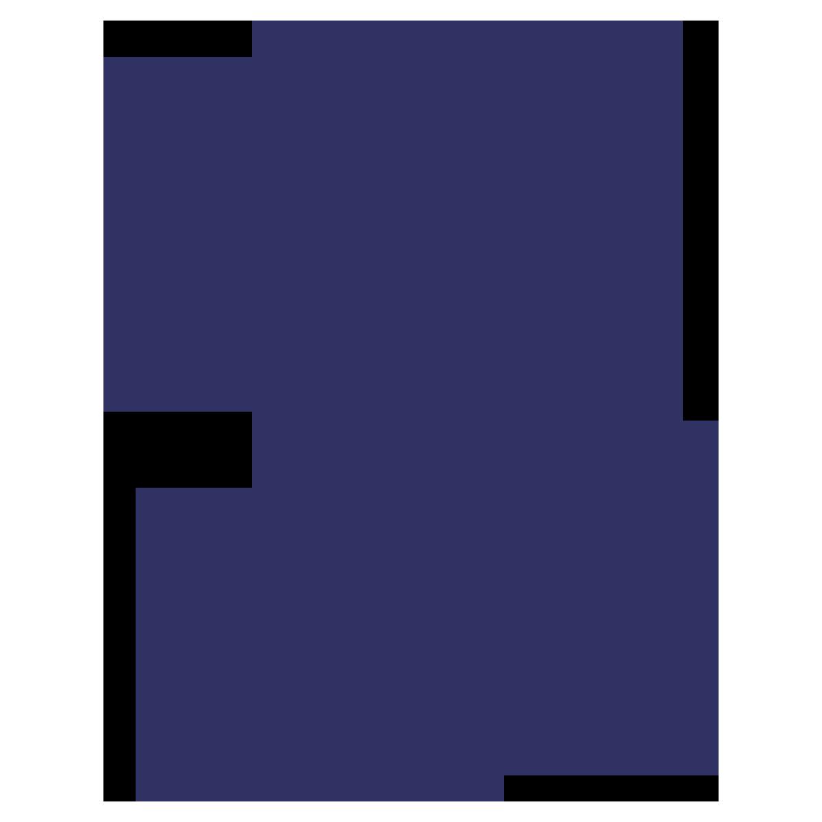 noun_Percent_33421_000000.png