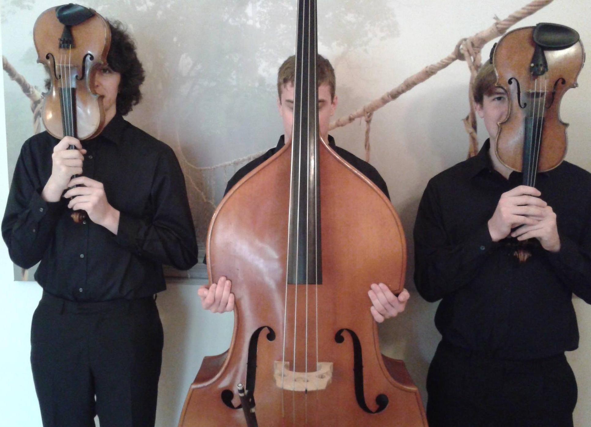 The Hampshire String Trio.