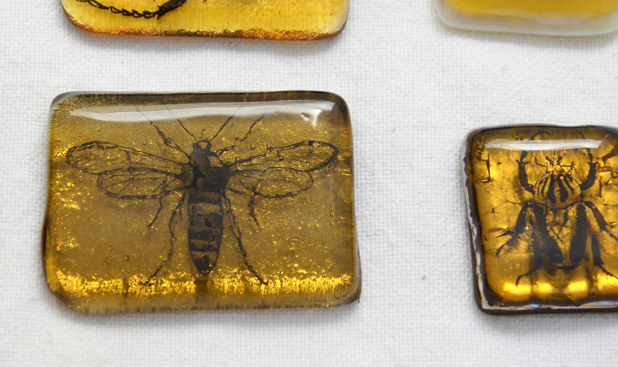 Test 8 on the left.   The platinum seems to have burned away a bit during the final fuse firing, whereas the platinum in test 6 on the right retains its full character and color.  Also note the interesting image distortion in the black insect decal on the left, which was sandwiched between the 2 glass layers .  The insect on the right sat atop the glass during final fuse and thus exhibits no distortion.