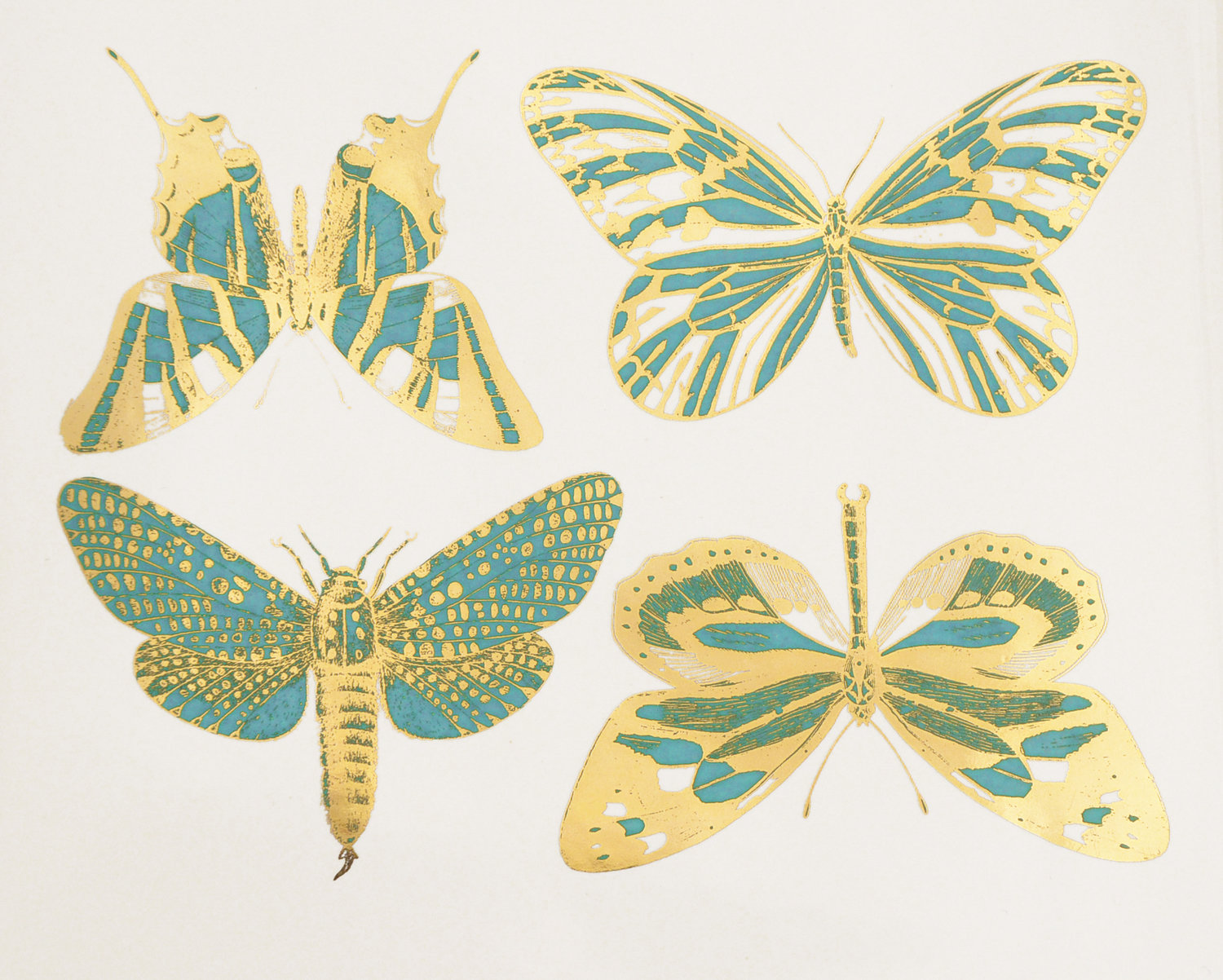 Two Color Large Butterfly Decals Custom Ceramic Decals Glass