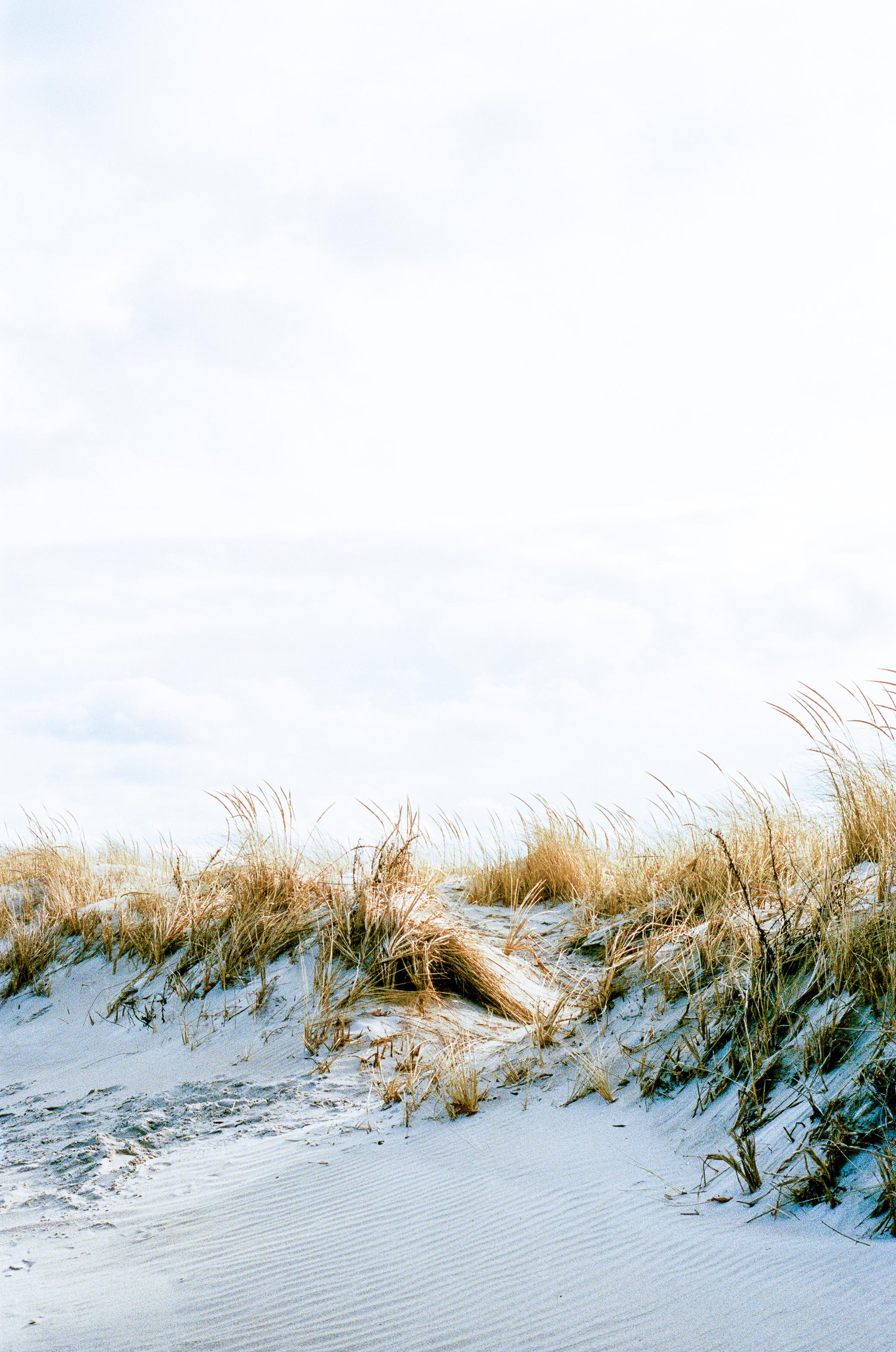 LeicaM6_Portra400-776.jpg