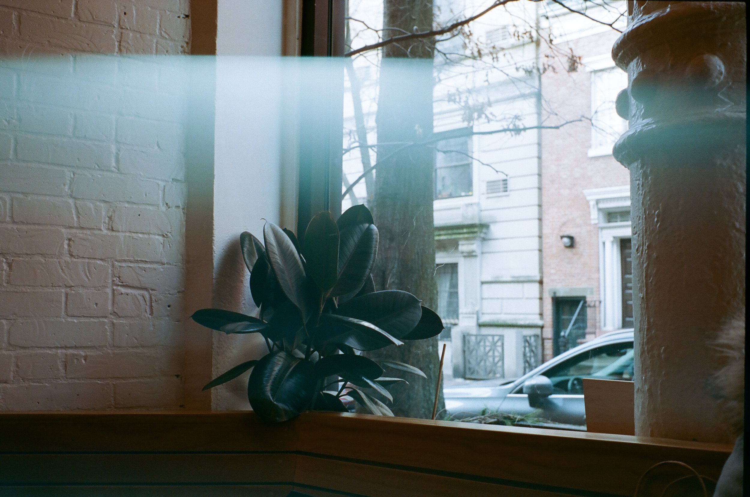 LeicaM6122018-1048.jpg