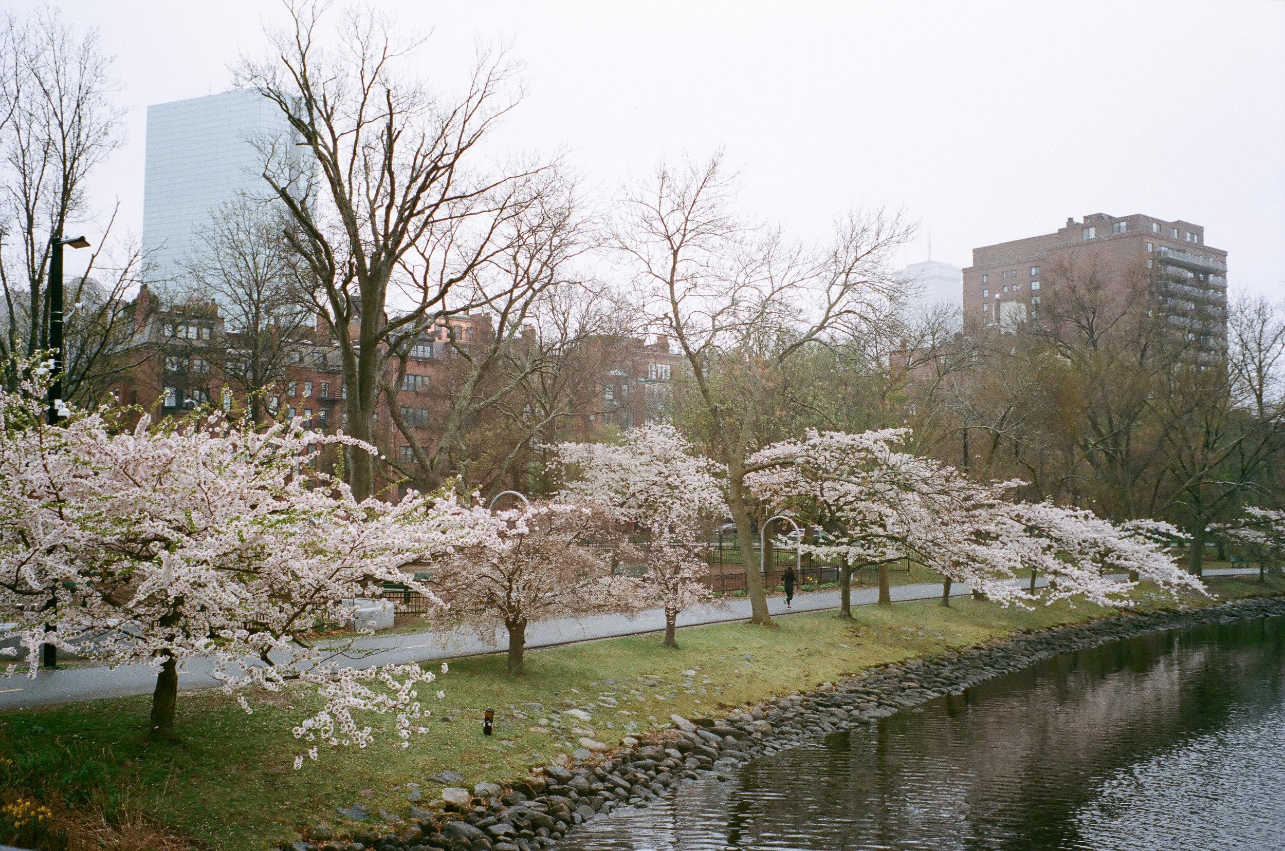 LeicaM6042019-1225.jpg
