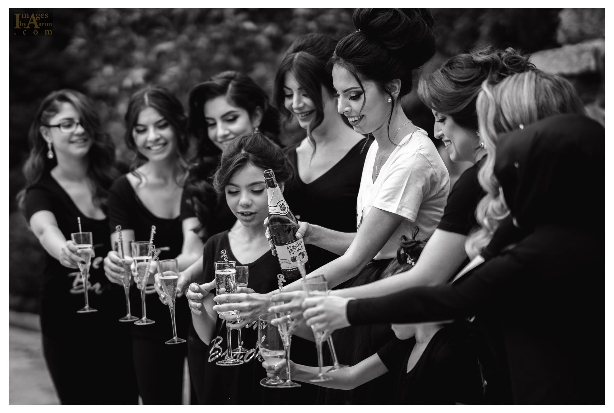 Gokce Turkish Wedding New York Photography The Royal Manor-22.jpg