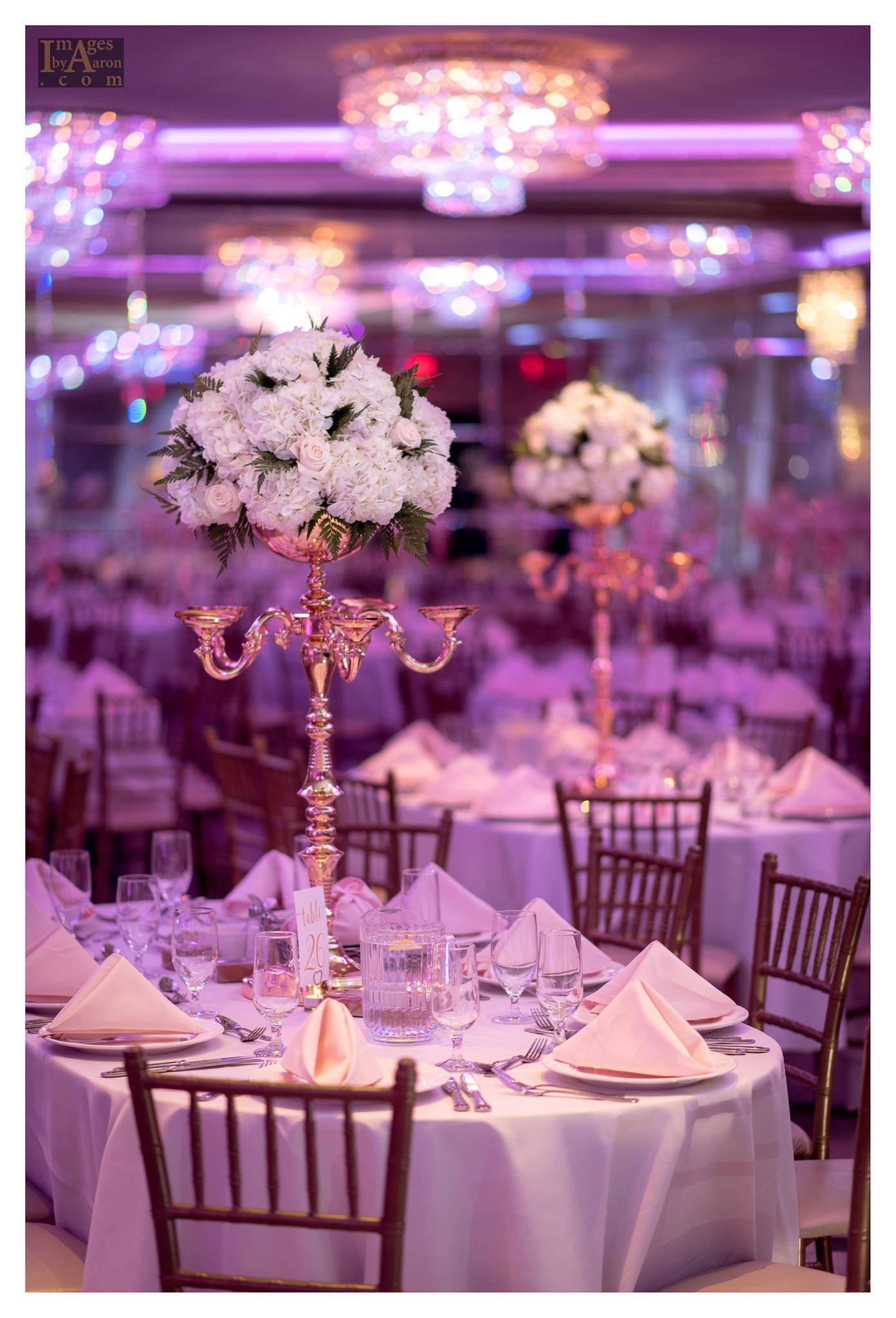 Gokce Turkish Wedding Reception New York Photographer Wedding Photography The Royal Manor-3.jpg