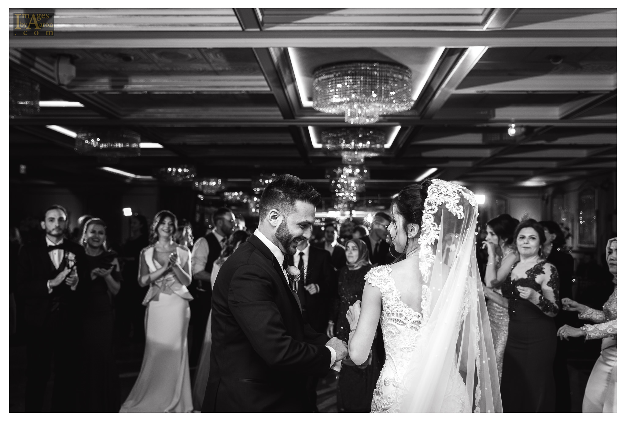 Gokce Turkish Wedding Reception New York Photographer Wedding Photography The Royal Manor-17.jpg