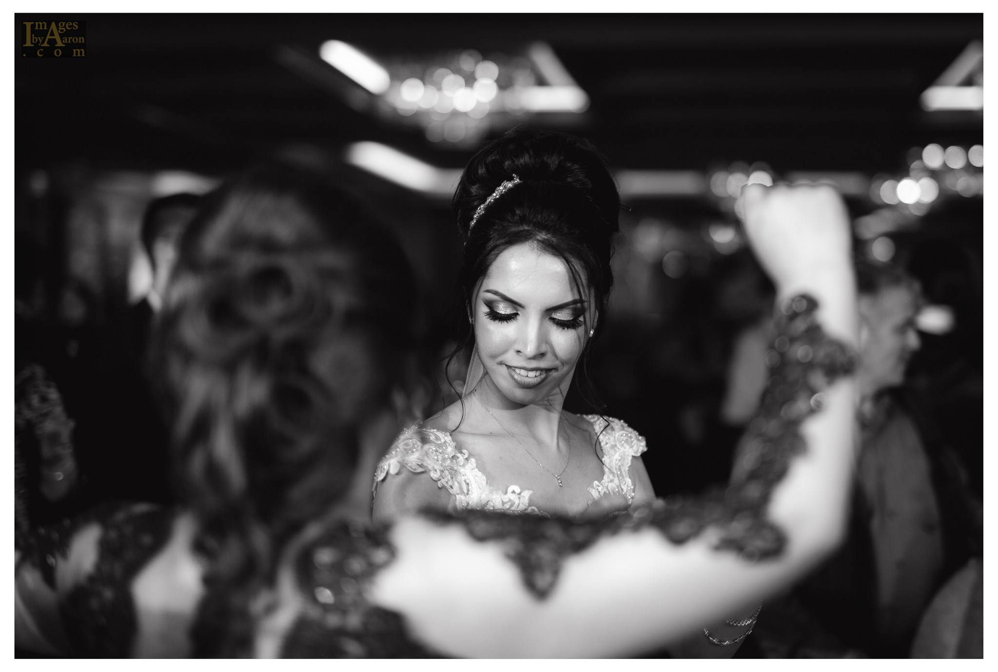 Gokce Turkish Wedding Reception New York Photographer Wedding Photography The Royal Manor-37.jpg