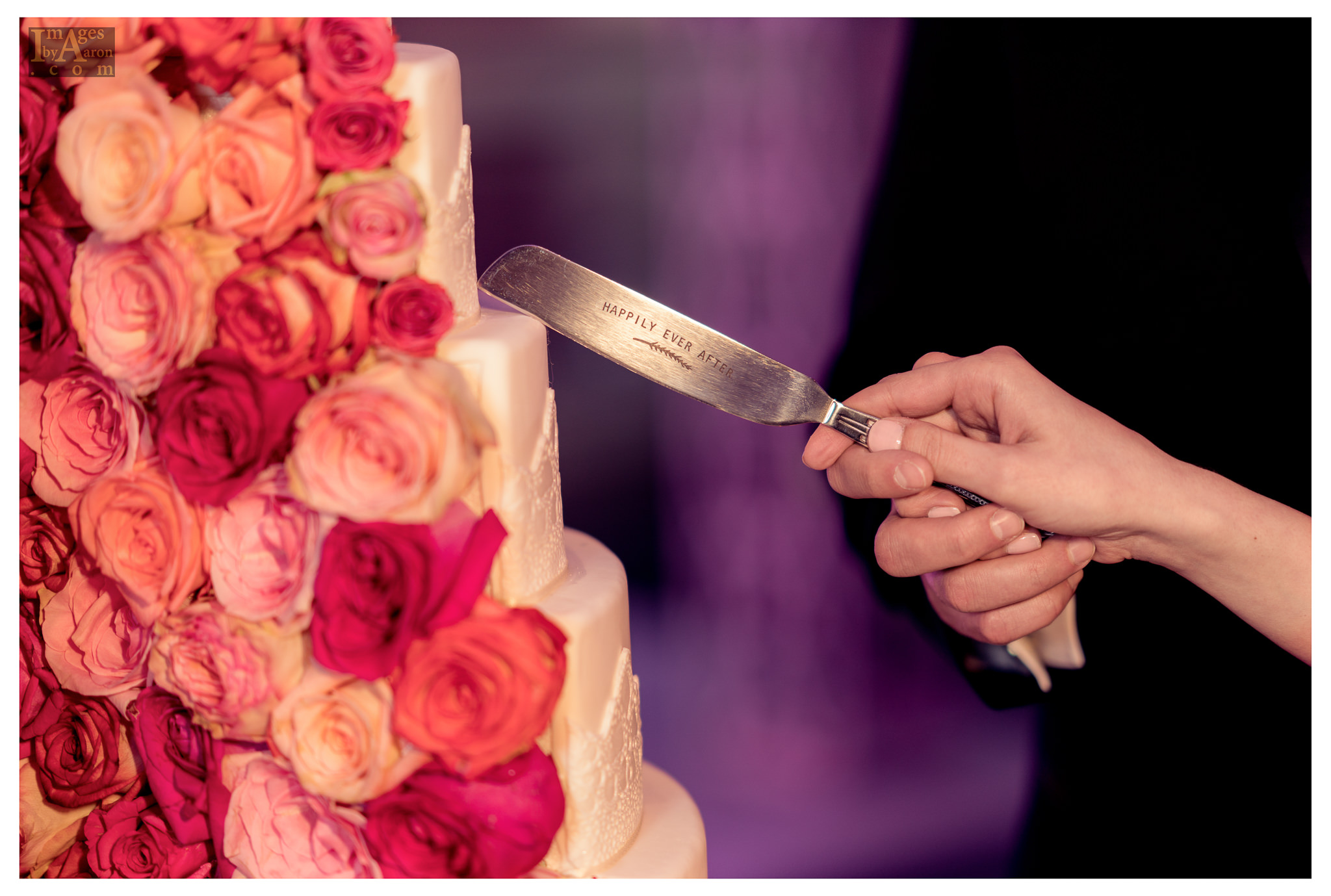 Gokce Turkish Wedding Reception New York Photographer Wedding Photography The Royal Manor-4.jpg