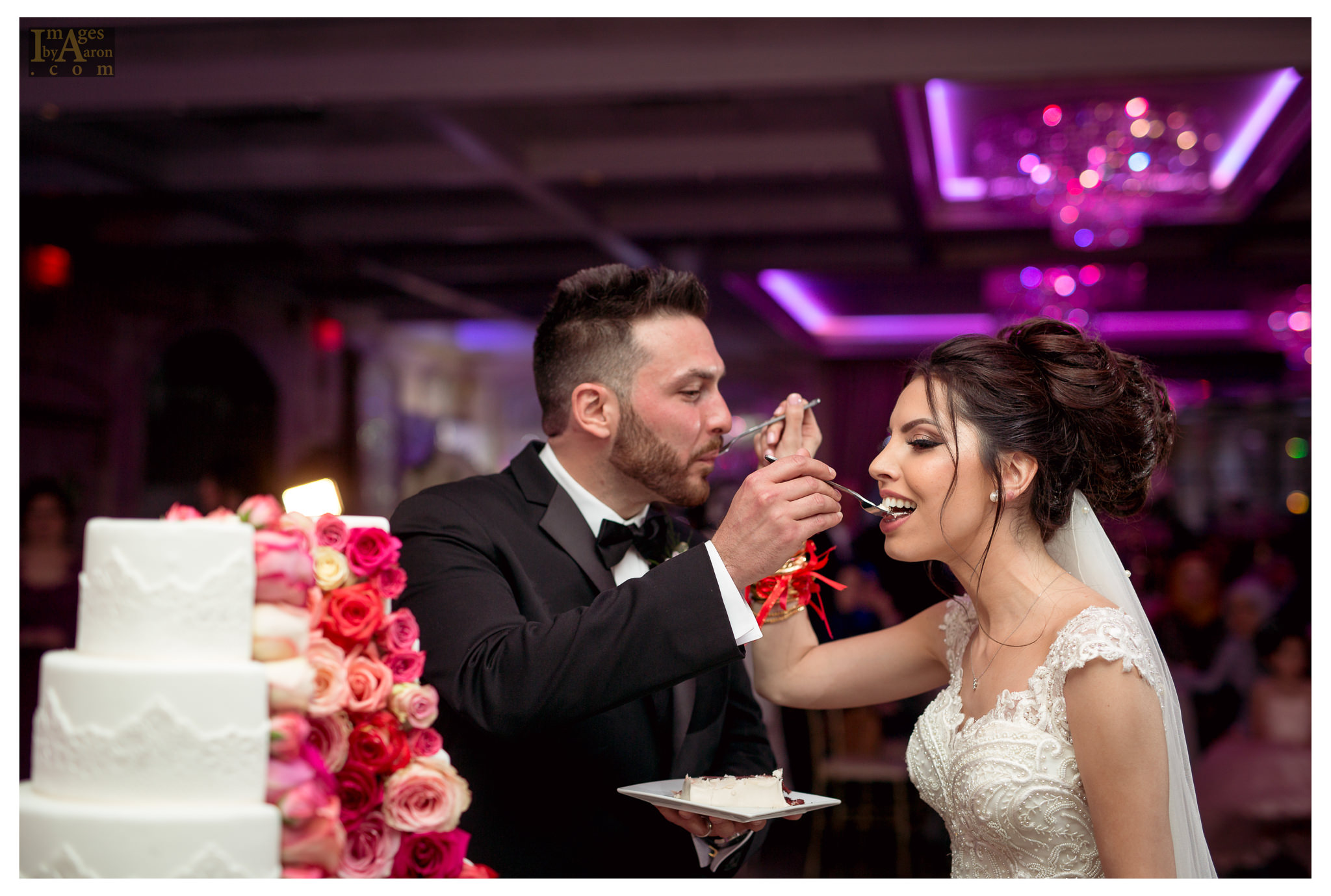Gokce Turkish Wedding Reception New York Photographer Wedding Photography The Royal Manor-32.jpg