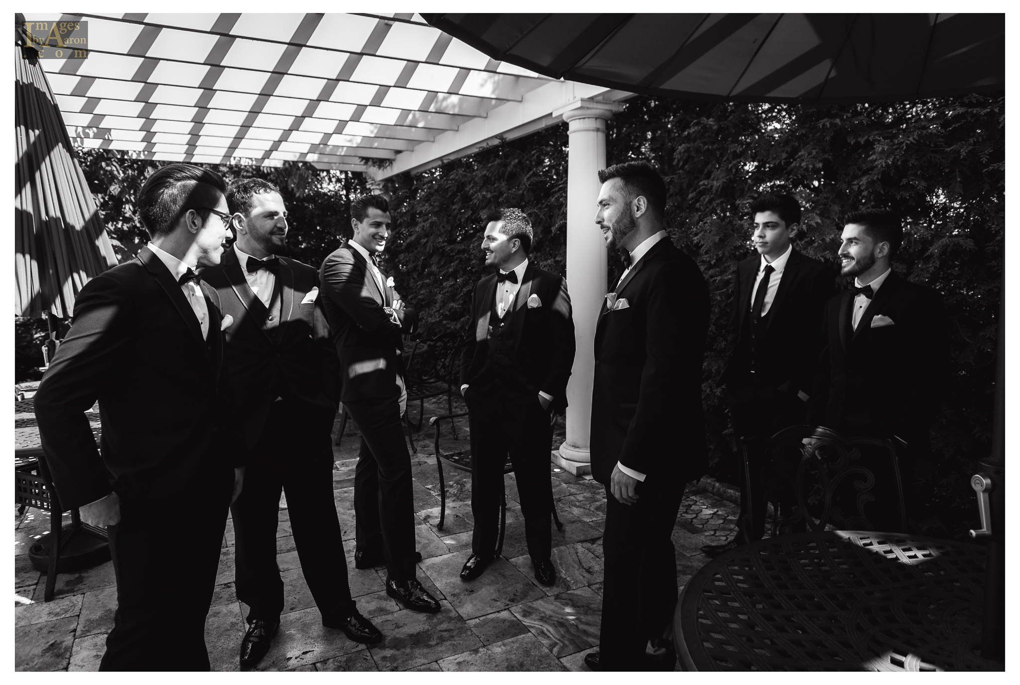 Gokce Turkish Wedding Portraits New York Photography The Royal Manor-4.jpg