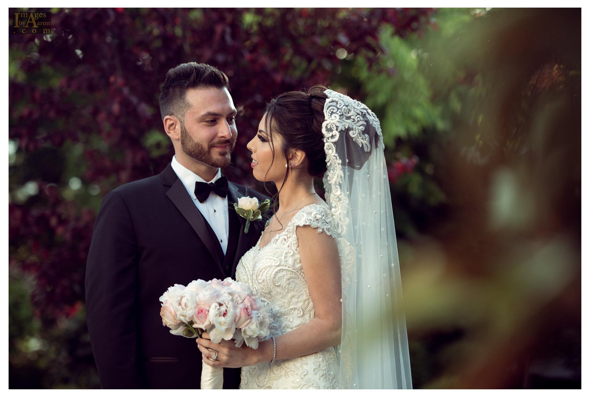 Gokce Turkish Wedding Portraits New York Photography The Royal Manor-12.jpg