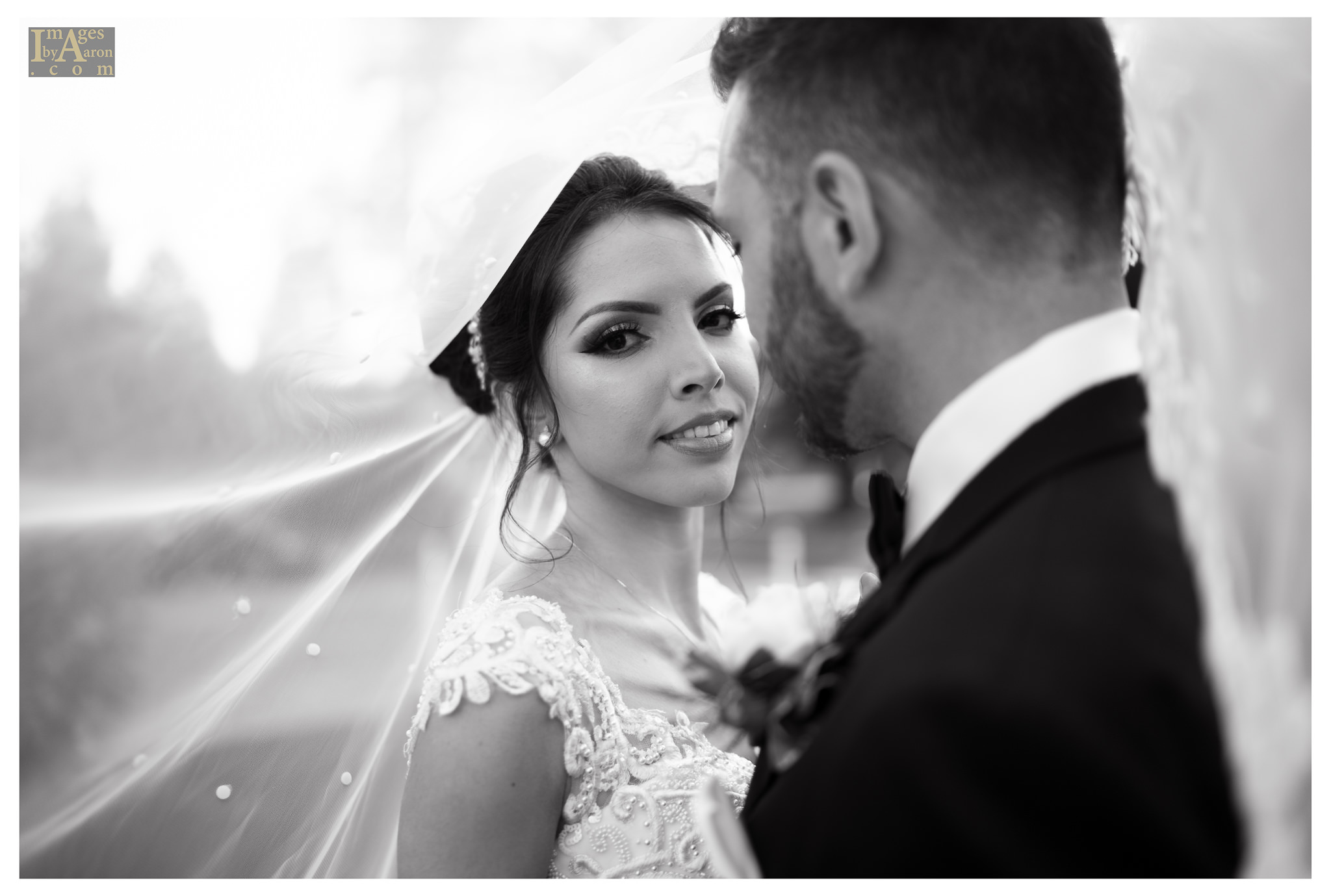 Gokce Turkish Wedding Portraits New York Photography The Royal Manor-7.jpg