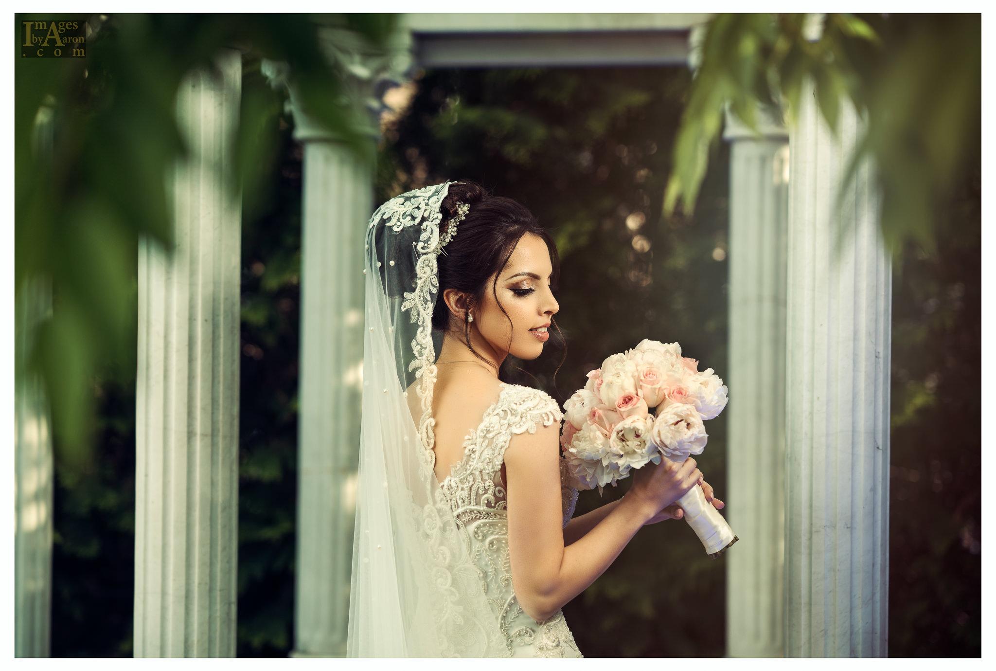 Gokce Turkish Wedding Portraits New York Photography The Royal Manor-11.jpg