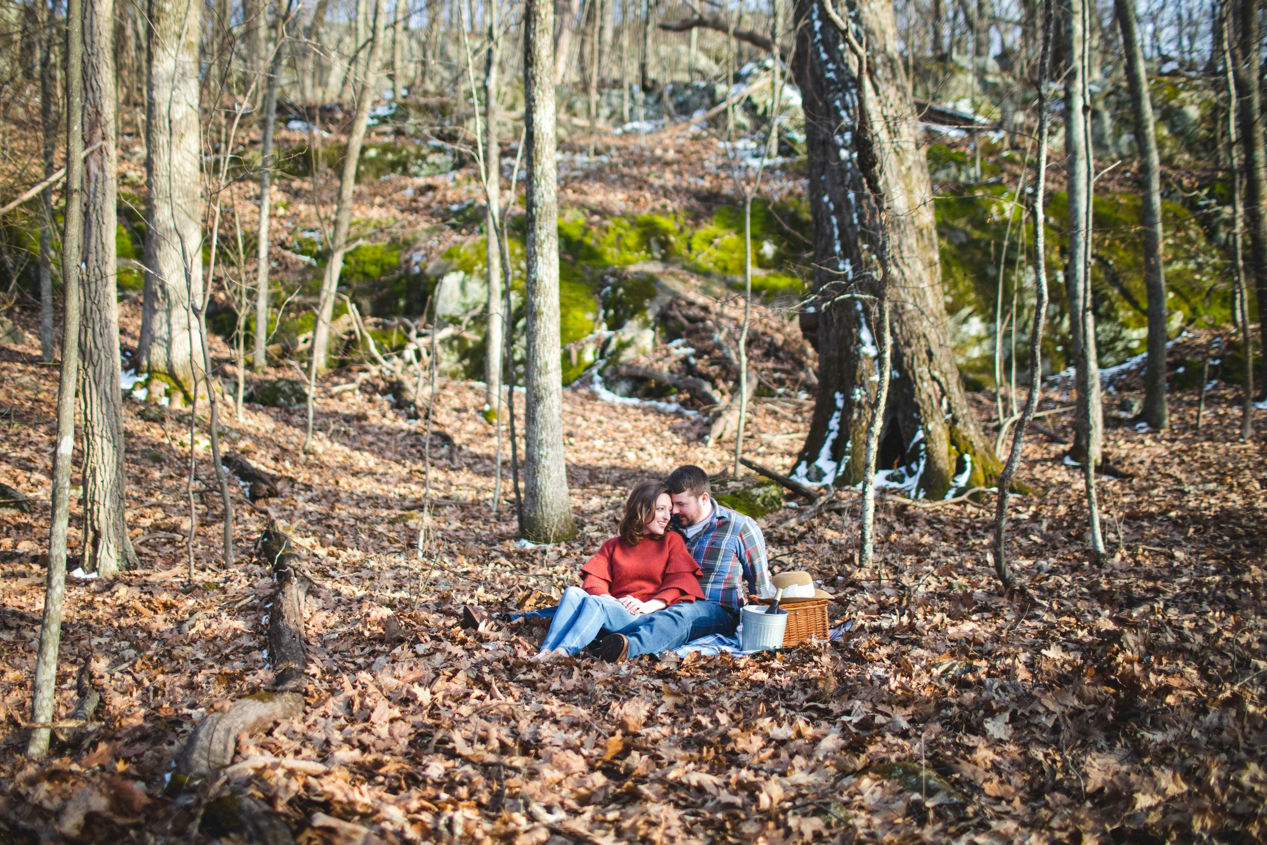 shenandoah-national-park-engagement-shenandoah-wedding-photographer-3.jpg